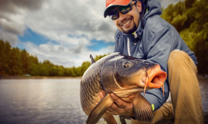 Carp-fishing-tips