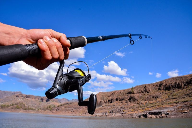 telescopic fishing rod buying guide