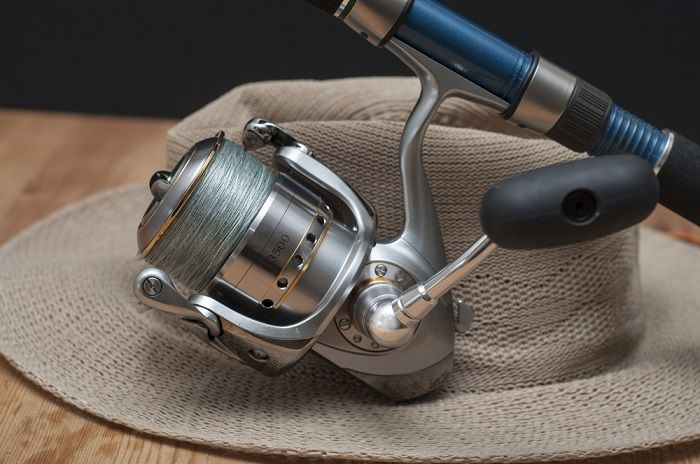 Maintenance and Cost spinning reel